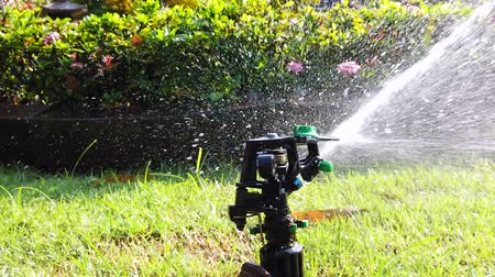 nemli : Springer water system used for watering plant and flower in the garden, full hd 1080p slow motion.