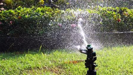 влажность : Springer water system used for watering plant and flower in the garden, full hd 1080p slow motion.