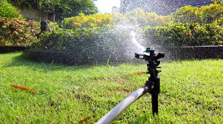 nemli : Springer water system used for watering plant and flower in the garden, 4k ultra HD.