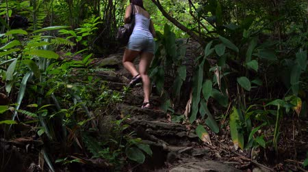 subtropical : The woman climbs on stone steps in the jungle Stock Footage
