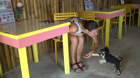 brindle : A woman is sitting in a cafe at a table and playing with a puppy
