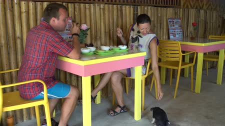 brindle : A man and a woman are having breakfast in a cafe. A woman is feeding a puppy Stock Footage