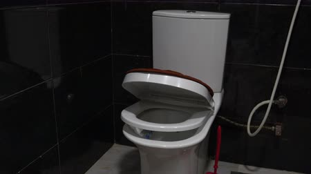 ceramika : Lid with toilet seat slowly lowered