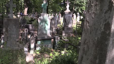 могила : Cemetery summer many graves and crosses