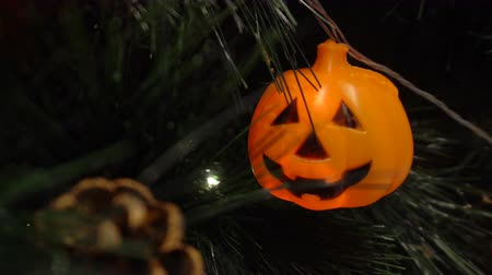 neve : Pumpkins and character with light decorated on tree in a party to celebrate Halloween festival. Stock Footage