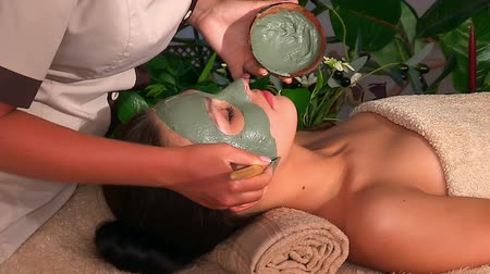 лицевой : Clay facial mask in beauty spa. Beautician apply mask on face of girl. Стоковые видеозаписи
