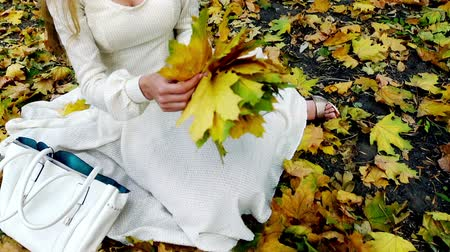 Autumn unrecognizable girl in fashion and lifestyle lyrics style. Beautiful woman pick up yellow leaves in bouquet sitting on fall land.