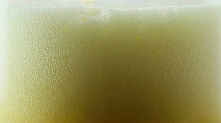 cervejaria : Beer being poured into translucent glass, white isolated background, detailed shot