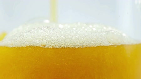 bira fabrikası : Beer being poured into translucent glass, white isolated background, detailed shot