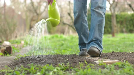 self sufficiency : Man Watering the Garden