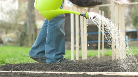self sufficiency : Man Watering Garden Stock Footage