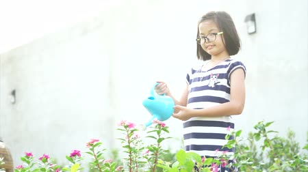 kutuları : Closeup Asian little girl watering the colourful blossom flowers by watering can Stok Video
