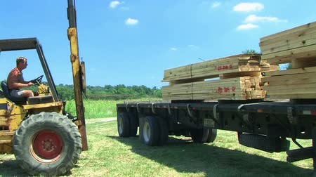 trator : Worker operates forklift while unloading lumber on construction site.