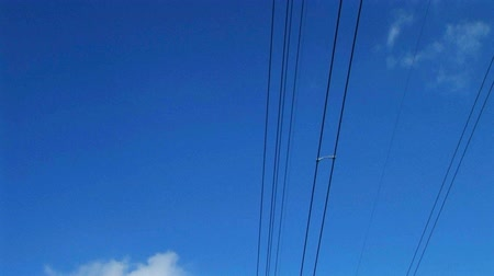 transmit : Slow tilt down of power lines with white puffy clouds, set in beautiful countryside.