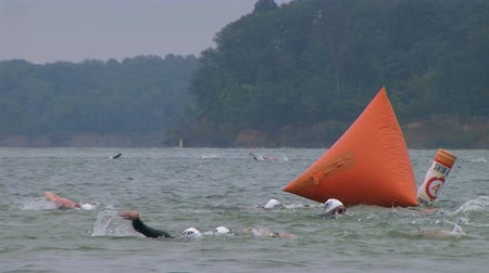 WAYNESVILLE - JULY 5: Swimmers (names withheld) from Ohio competing during the swim leg of the Caesar Creek Triathlon held at Caesar Creek State Park July 5, 2009 in Waynesville, OH. Dostupné videozáznamy