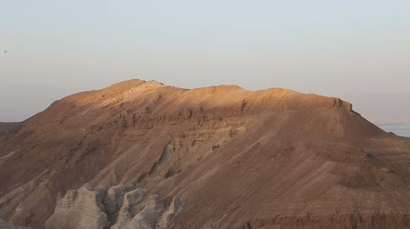 arazi : The Nature Of Israel Stok Video