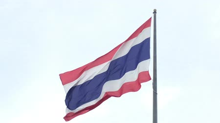 symbol of respect : The Thai flag fly away. Stock Footage