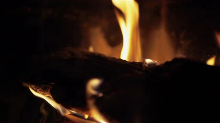 ardente : Bright burning wood, campfire macro video. Pan