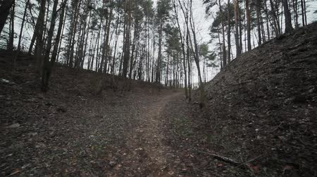 litvánia : Following a path inside of a gloomy ravine. Flycam