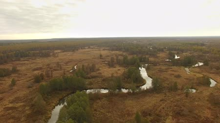 horizonte sobre a água : 4K aerial view flying over autumn landscape river and fields