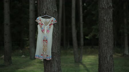virginity : Beautiful embroidered dress with flower ornament hanging on a tree in a pine forest