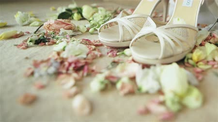 high heeled sandals : Beautiful luxury pair of high heels white bridal shoes lace sandals standing on carpet with rose flowers petals around waiting for bride on her wedding day. Macro close-up. Dolly Stock Footage