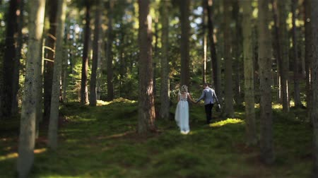 Man and woman walk up hill holding hands in green forest wide shot tilt-shift. Couple in love just married climb the mountain together. Family life after marriage working on relationship trust concept