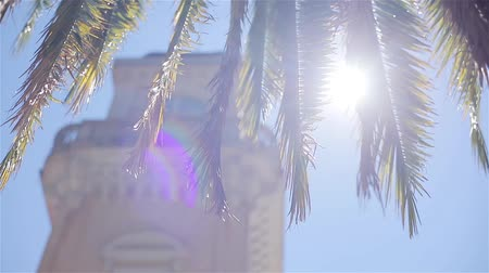 Sun beam shining through tree palm leaves backlit blue sky at unfocused building tower background close up. Looking up at warm sunny day exotic destinations travel French seaside architecture heritage