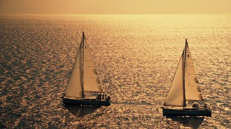 sepya : Yacht sailing against sunset. Sailboat. Luxury yacht. Sailing. Vacation. HD Stok Video