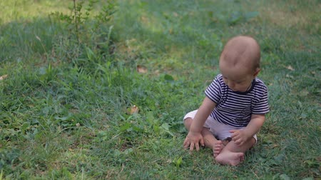 learning to walk : Baby siting on grass