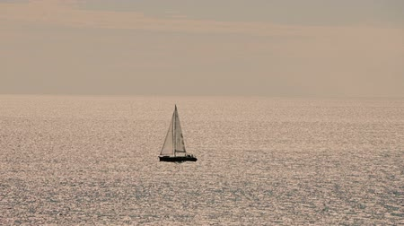 żaglówka : A sailboat, yacht on the horizon in sunset