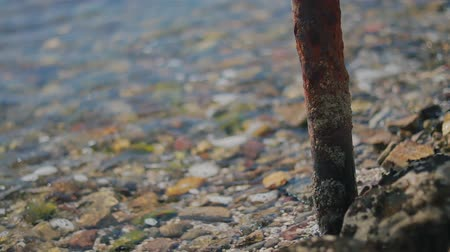 deceleration : Small waves lapping and receding on rocky beach rusty pipe