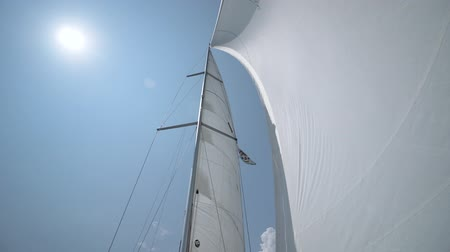 vela : Sail into which the wind blows. Yacht on the go