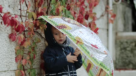 przedszkolak : Sad little boy stands under an umbrella during the rain on a background of autumn yellow leaves