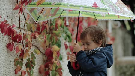 folha : Little boy stands under an umbrella during the rain on a background of autumn yellow leaves