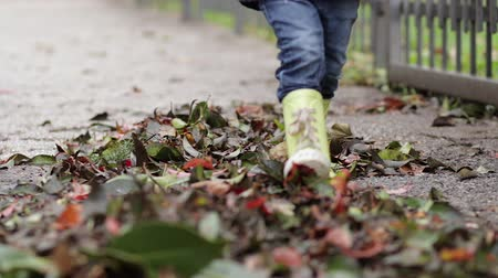 A little boy in rubber boots and jeans rakes autumn yellow leaves with his feet and walks on the leaves