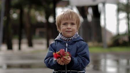 Little boy holds yellow autumn leaves in his hands
