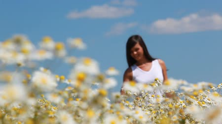 kadınlık : Young woman walking n the meadow and touching camomiles