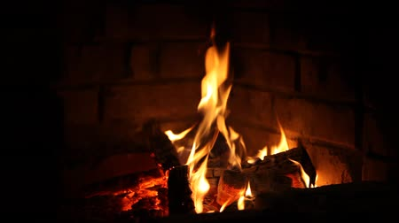 mekan : Firewood burning in the fireplace