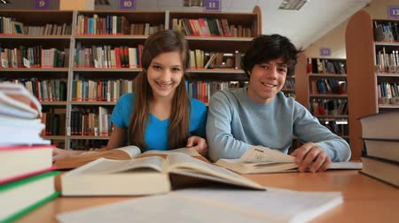aluno : Teenage boy and girl working together in library