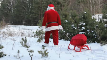 рождественская елка : Santa pulling sled with sack of presents