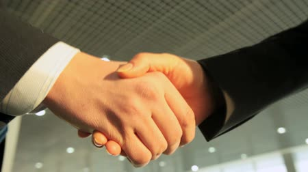 collaboration : Two businesspeople shaking hands indicating a deal