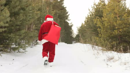 santa : Santa with sack full of presents going through winter forest