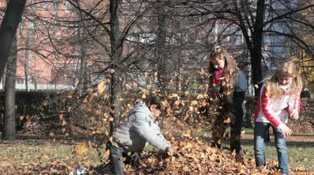 outside : Playful children making a mess in an autumn public garden full of leaves
