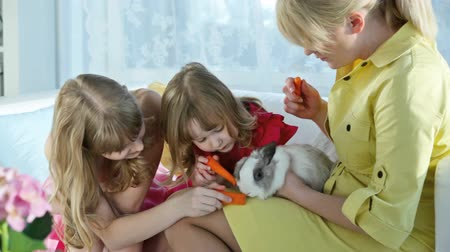 carinho : Young beautiful woman holding a rabbit while little girls feeding it with fresh carrot, Easter series