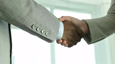 collaboration : Two businesspeople shaking hands