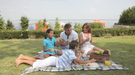 пикник : Parents and kids hanging out together eating in the open air Стоковые видеозаписи
