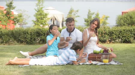 пикник : Family spending summer days together picnicking and enjoying the warmth Стоковые видеозаписи
