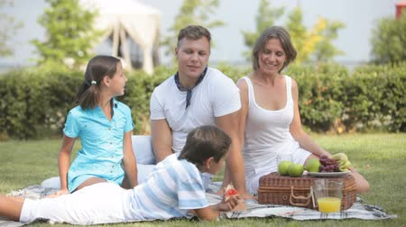 piquenique : Family idyll on a sunny picnic day