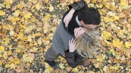 amigos : Young people viewed from above hugging affectionately in the autumn park Vídeos
